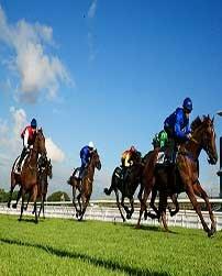 Horse Racing Betting Tips Australia